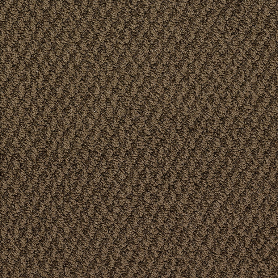 STAINMASTER Oracle Active Family Hoover Dam Berber Carpet Sample