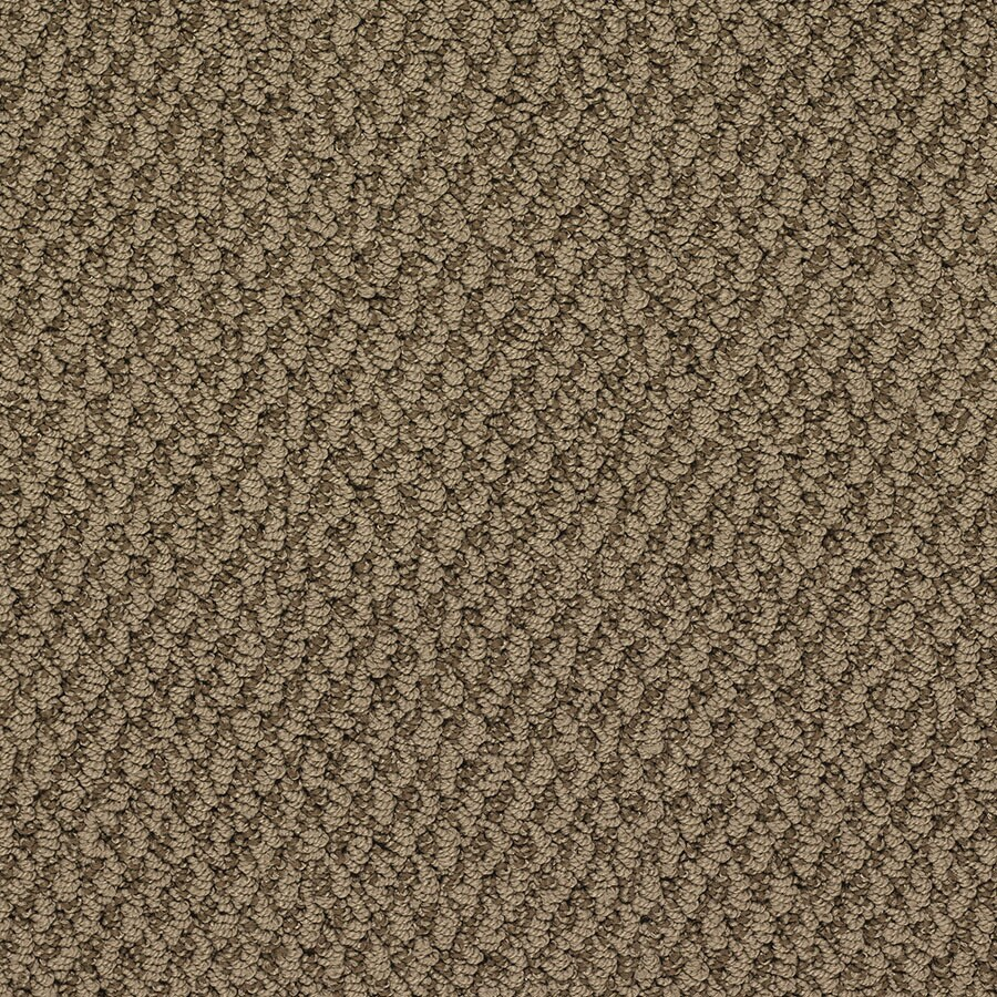 STAINMASTER Oracle Active Family Eiffel Tower Berber Carpet Sample
