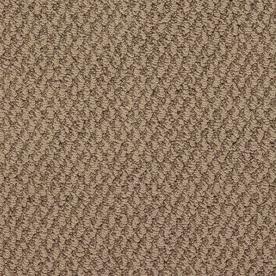 STAINMASTER Oracle Active Family Stonehenge Berber Carpet Sample