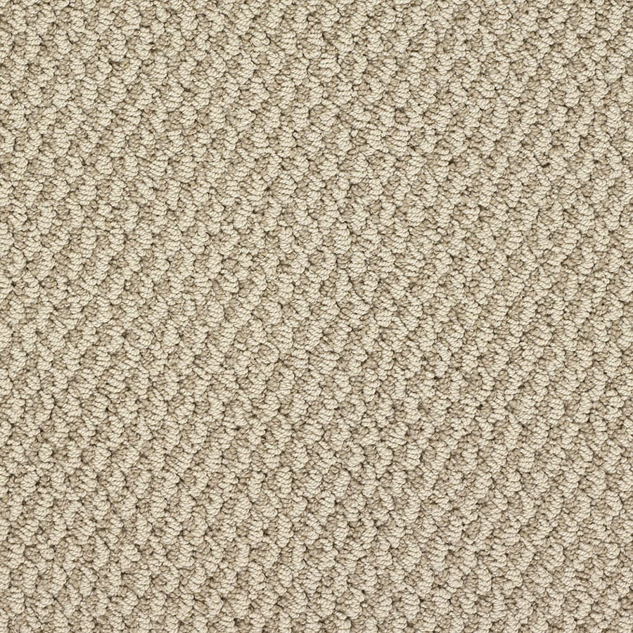 STAINMASTER Oracle Active Family National Mall Berber Carpet Sample