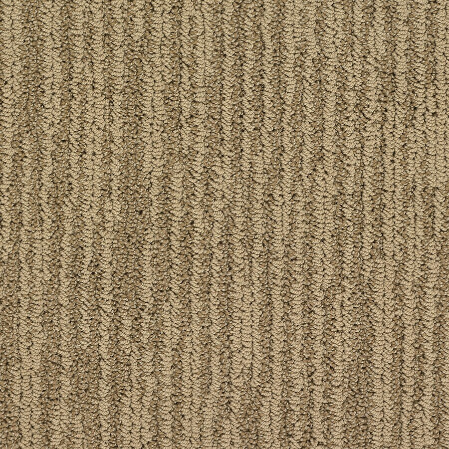 STAINMASTER Olympian Active Family Notre Dame Berber Carpet Sample