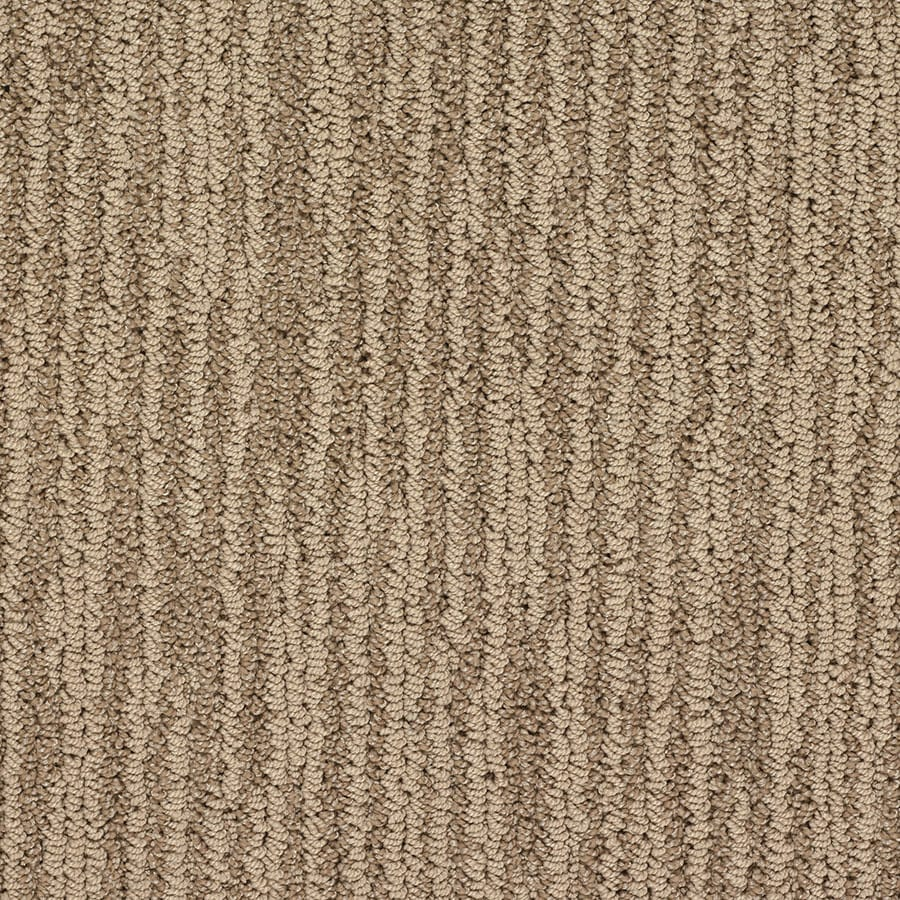 STAINMASTER Olympian Active Family Versailles Berber Carpet Sample
