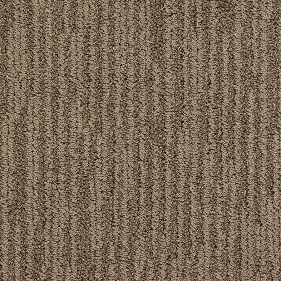 STAINMASTER Olympian Active Family Stonehenge Berber Carpet Sample
