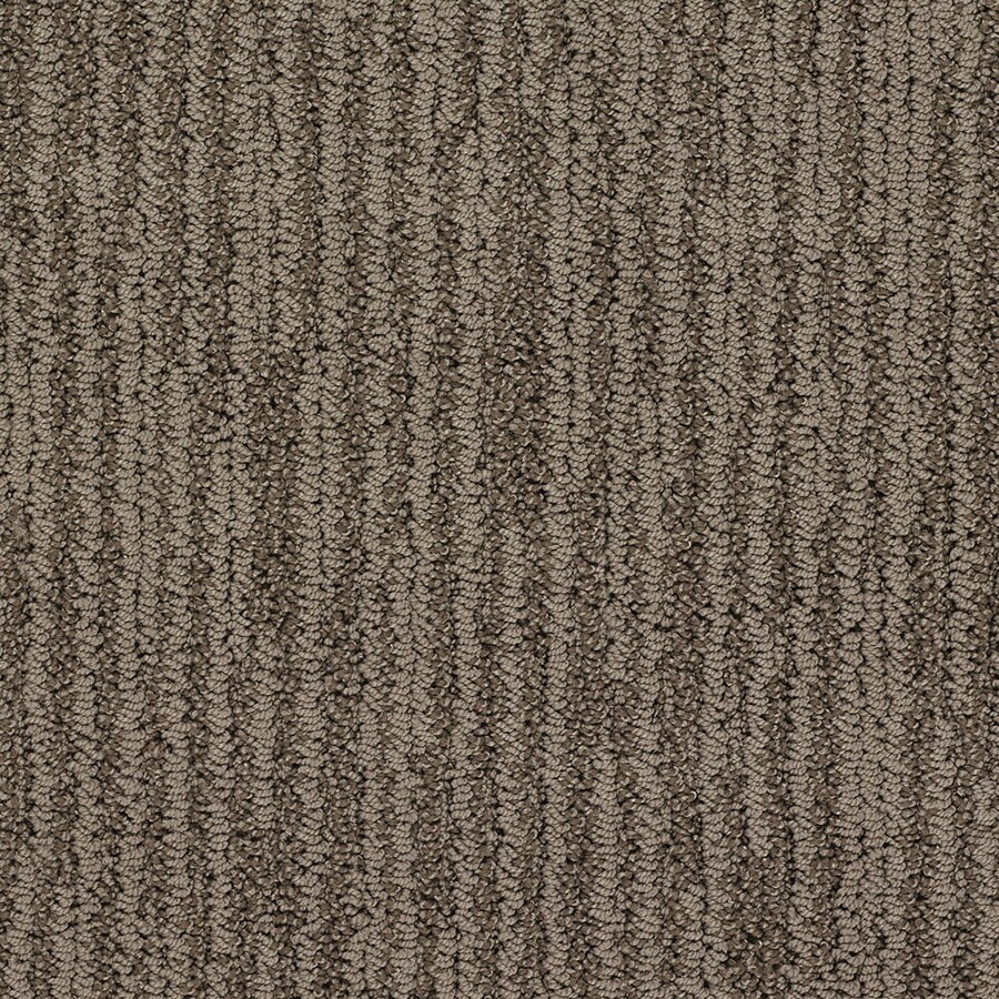 STAINMASTER Active Family Olympian Oliver Twist Berber/Loop Carpet Sample
