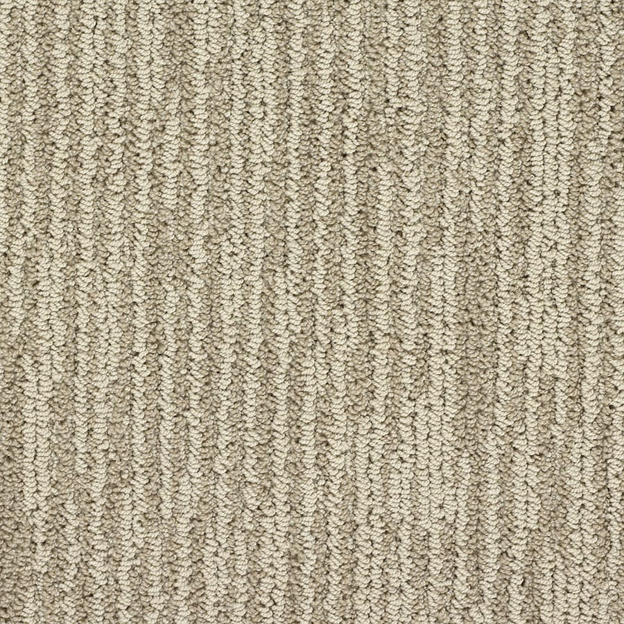 STAINMASTER Olympian Active Family National Mall Berber Carpet Sample