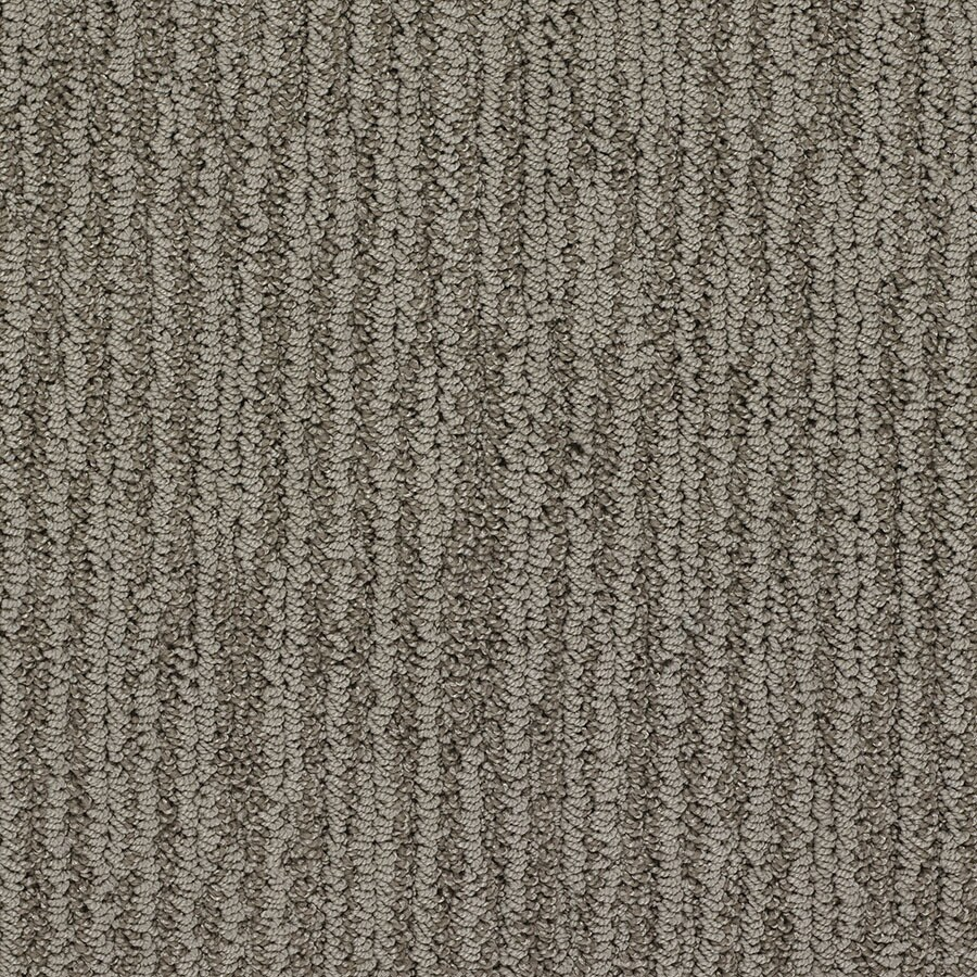STAINMASTER Olympian Active Family Times Square Berber Carpet Sample