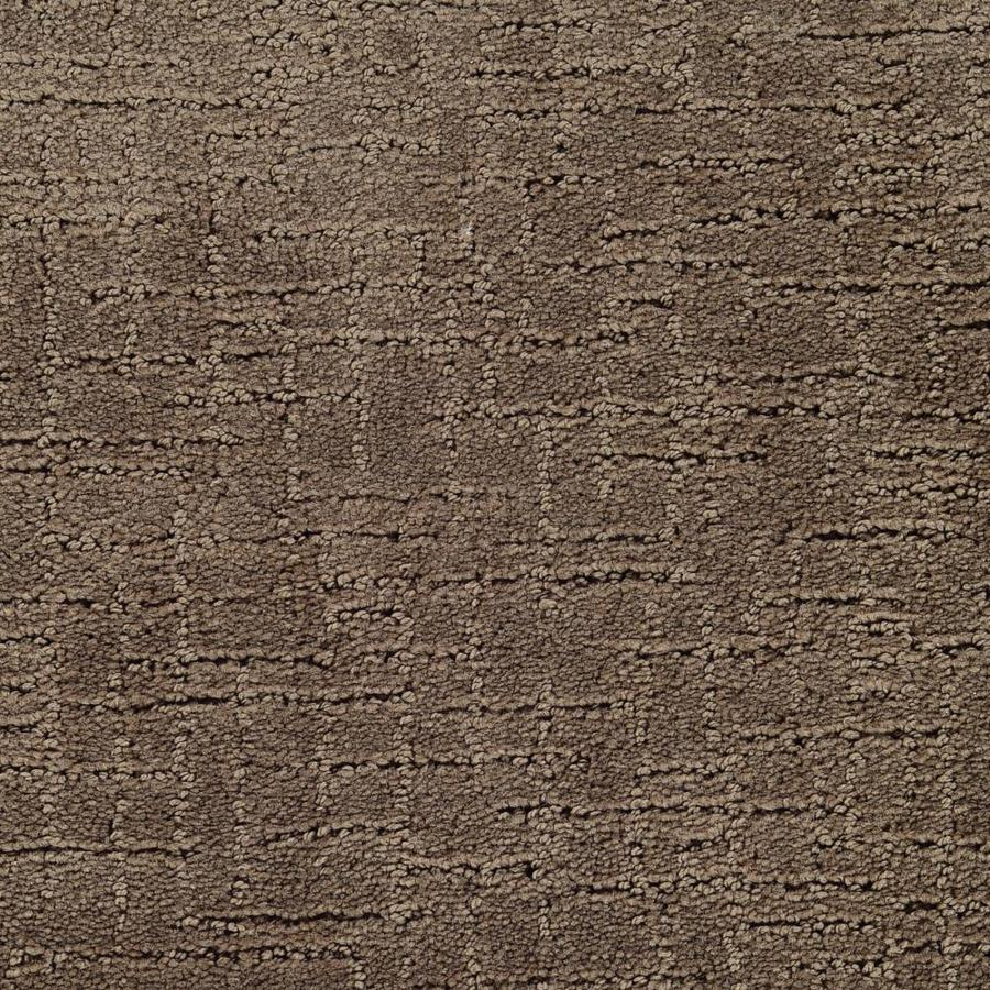STAINMASTER Affirmed Active Family Beethoven Cut and Loop Carpet Sample