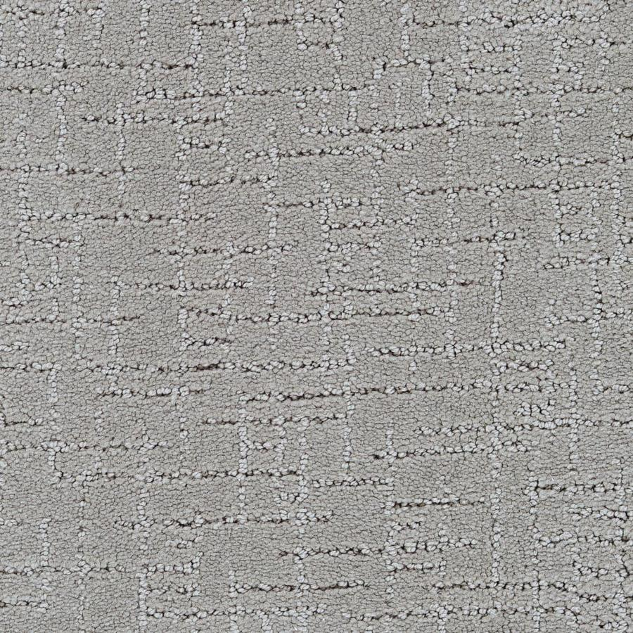 STAINMASTER Active Family Affirmed Keeness Berber/Loop Carpet Sample