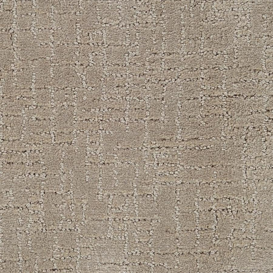 STAINMASTER Active Family Affirmed Fabrication Berber/Loop Carpet Sample