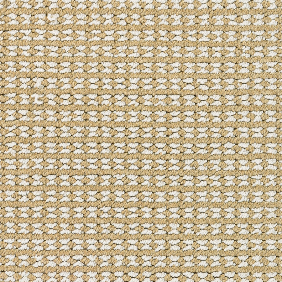 STAINMASTER Secret Dream PetProtect Canvas Berber Carpet Sample