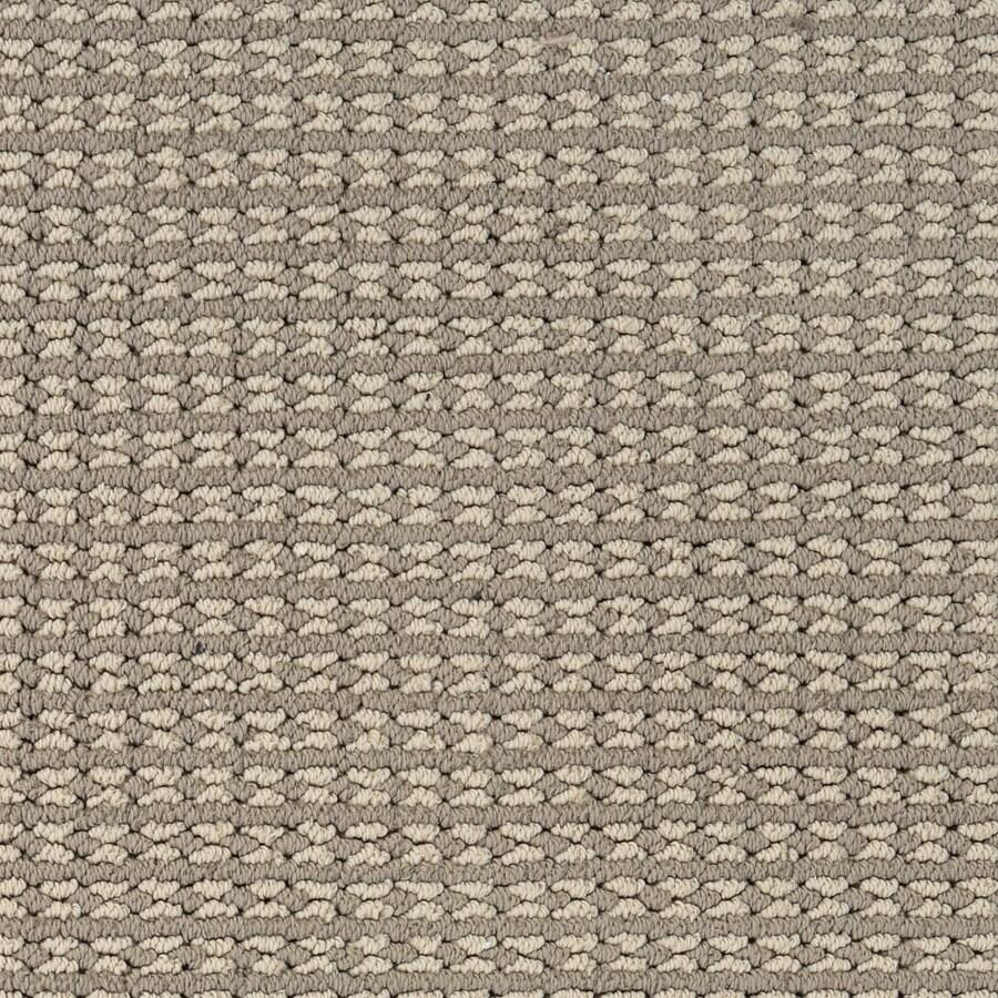 STAINMASTER PetProtect Secret Dream Matisse Carpet Sample