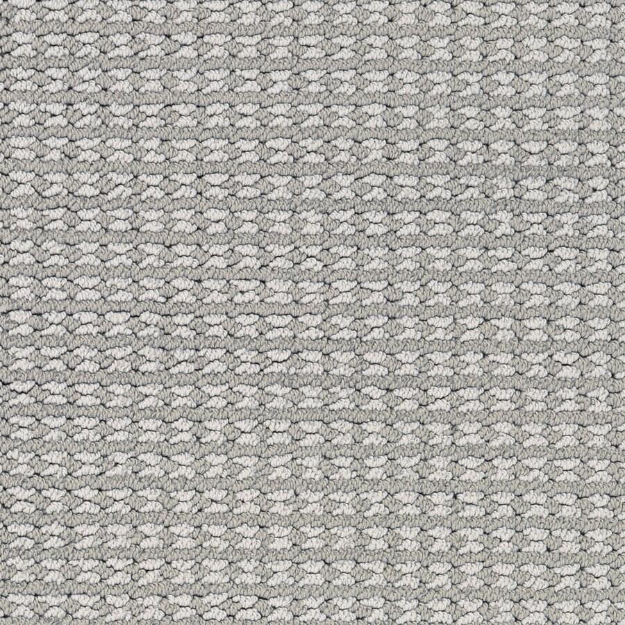 STAINMASTER Secret Dream PetProtect Electra Berber Carpet Sample