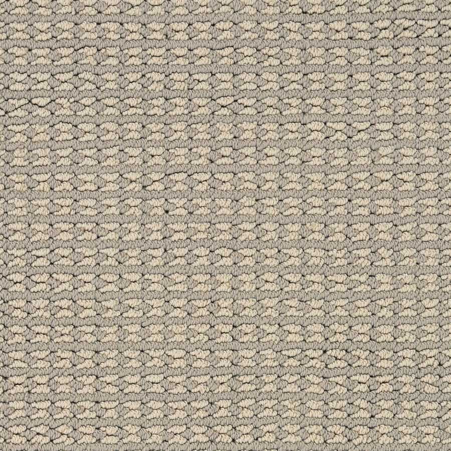 STAINMASTER Secret Dream PetProtect Moon Flower Berber Carpet Sample