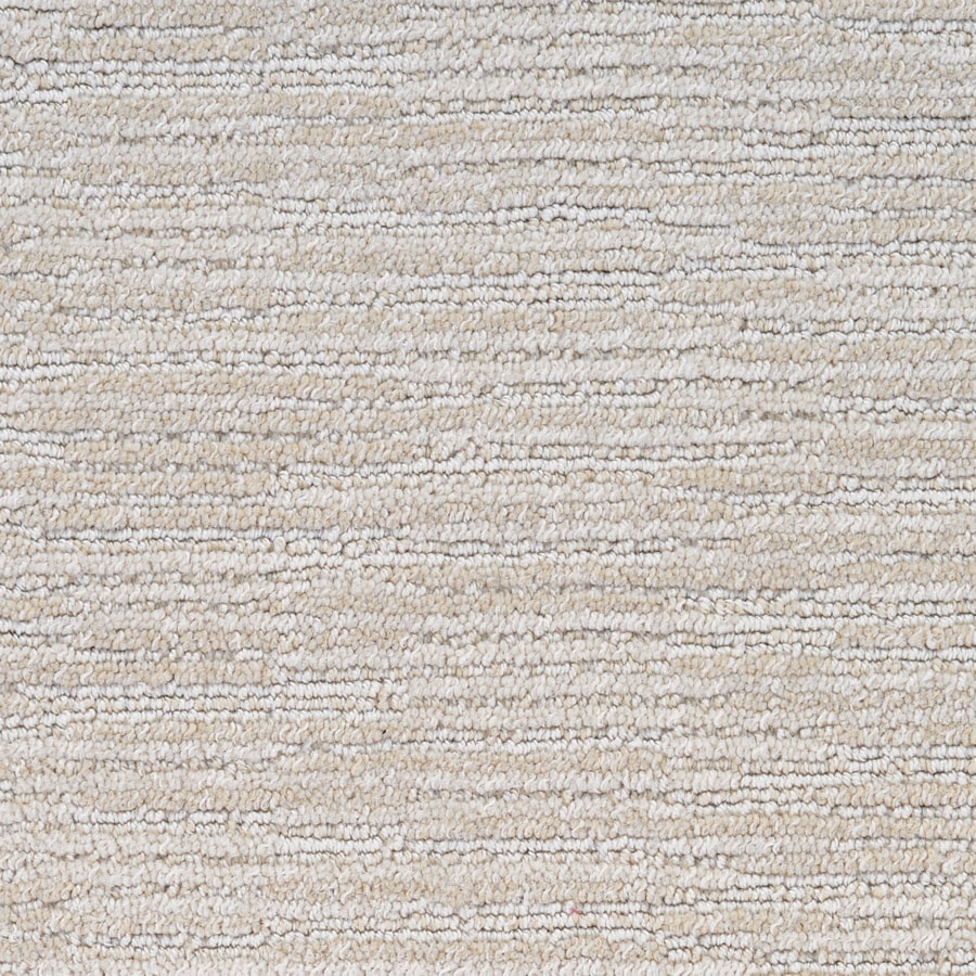 STAINMASTER PetProtect Plantation Cove Tortoise Shell Berber/Loop Carpet Sample