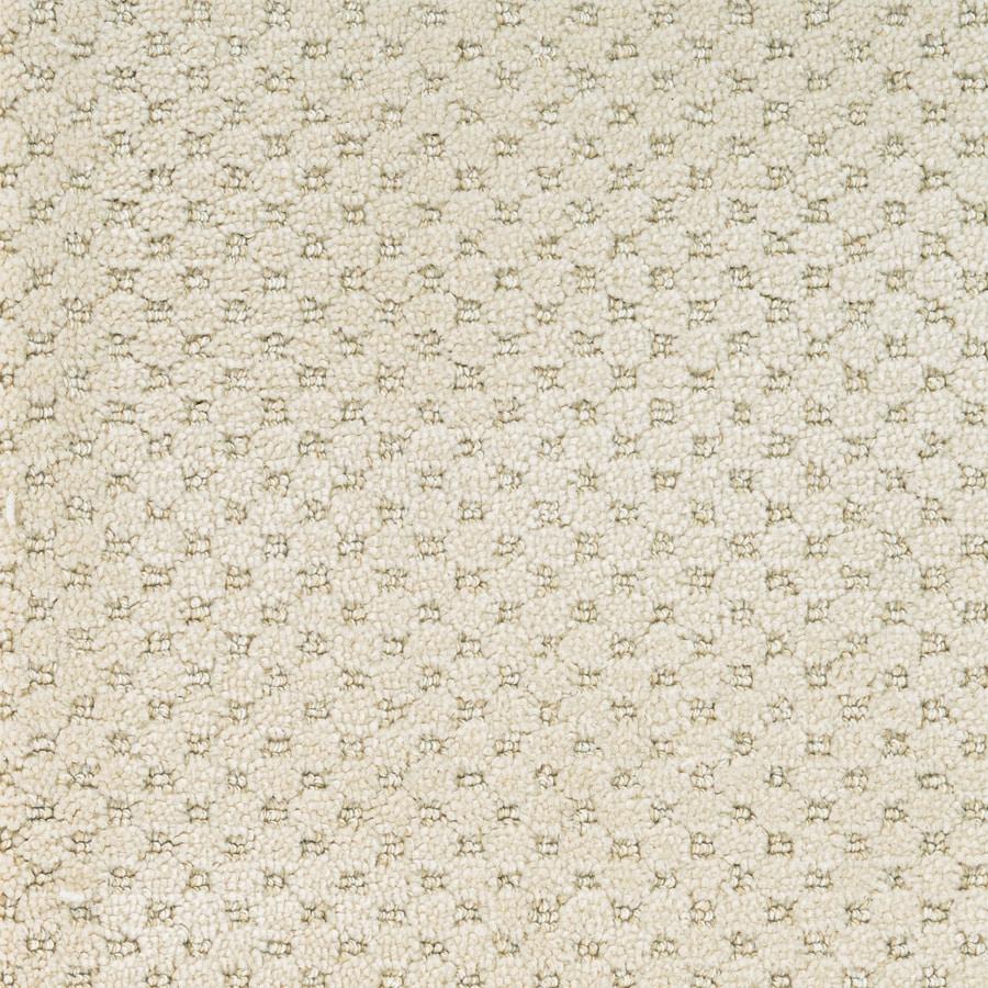 STAINMASTER PetProtect Natural Essence Royal Canvas Carpet Sample