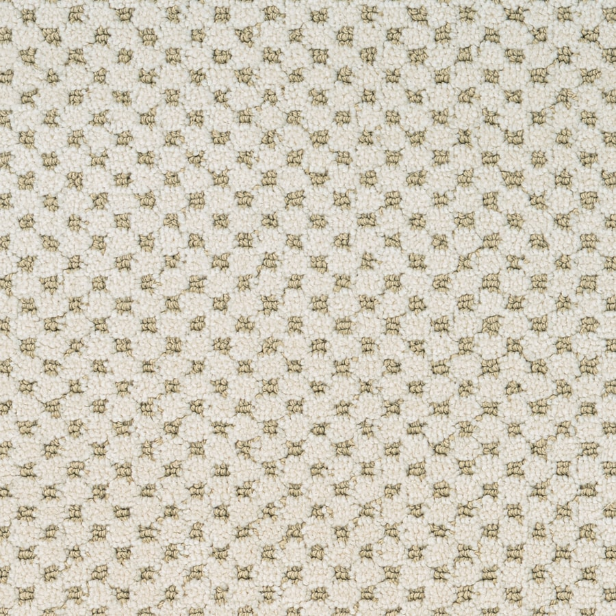 STAINMASTER Natural Essence PetProtect Nova Cut and Loop Carpet Sample