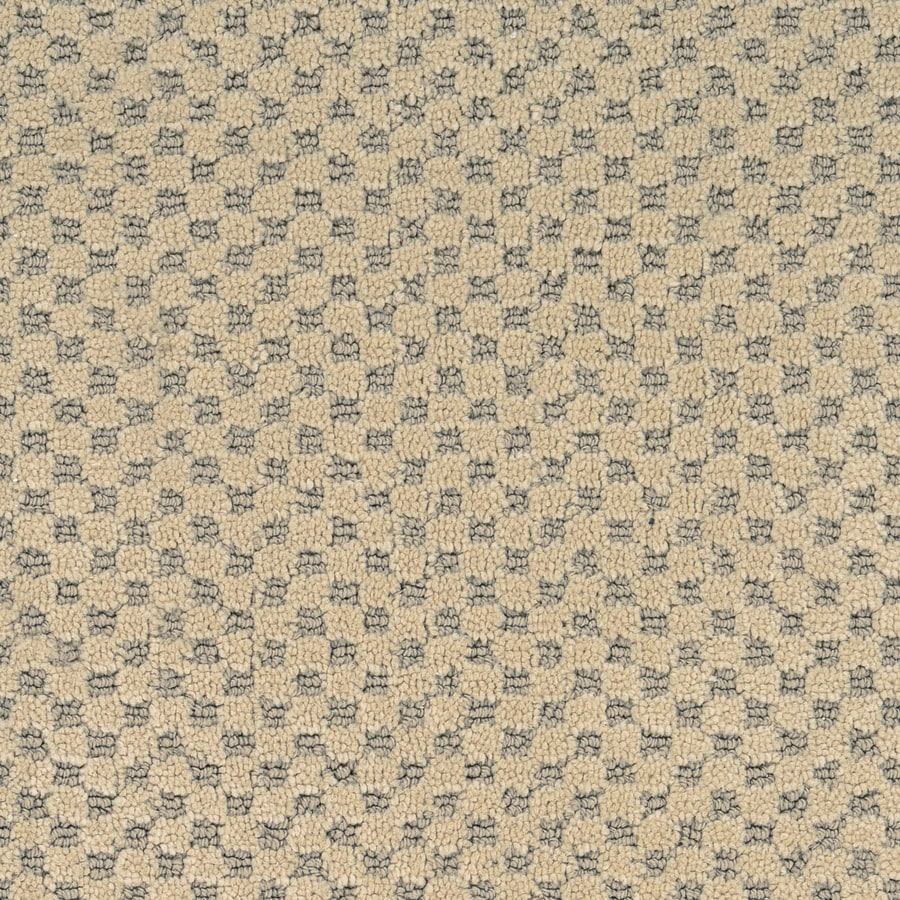 STAINMASTER PetProtect Natural Essence Jamboree Carpet Sample