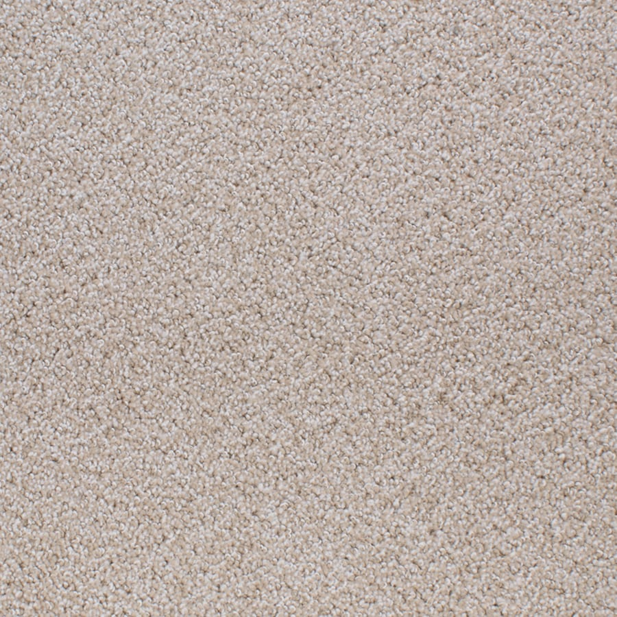 STAINMASTER Oak Grove Active Family Cream/Beige/Almond Cut and Loop Carpet Sample