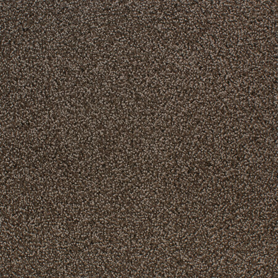 STAINMASTER Oak Grove Active Family Brown/Tan Cut and Loop Carpet Sample