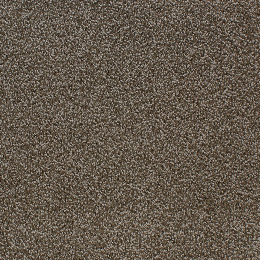 STAINMASTER Oak Grove Active Family Brown/Tan Cut and Loop Carpet Sample