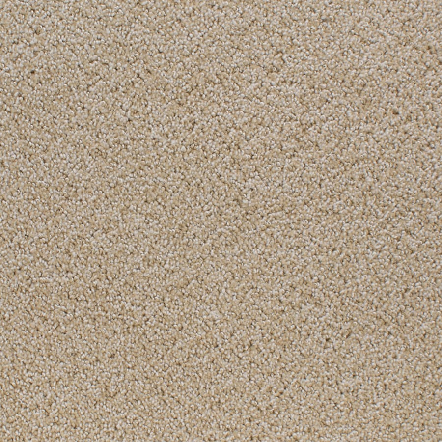 STAINMASTER Oak Grove Active Family Yellow/Gold Cut and Loop Carpet Sample