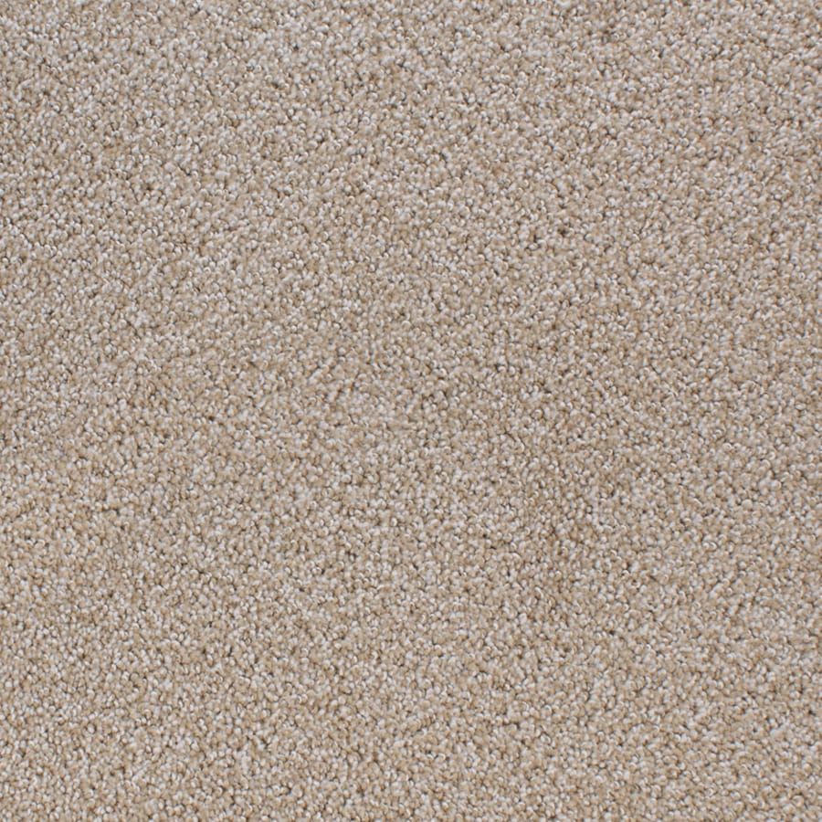 STAINMASTER Active Family Oak Grove Brown/Tan Carpet Sample