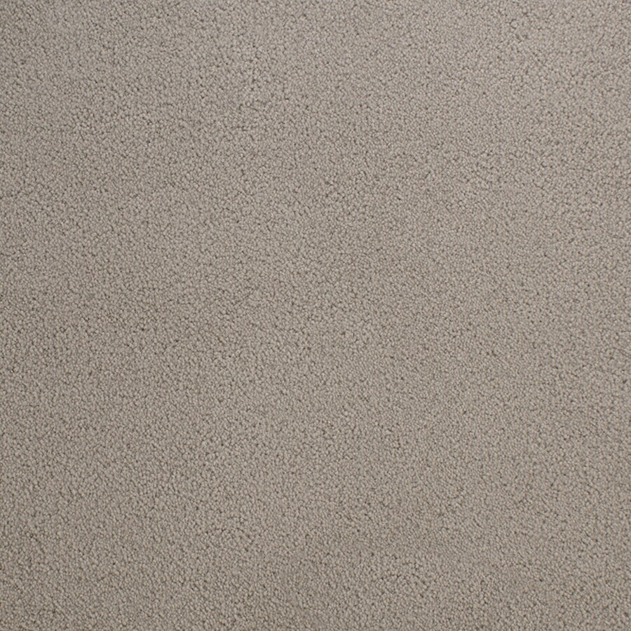 STAINMASTER Active Family Capri Place Gray/Silver Carpet Sample