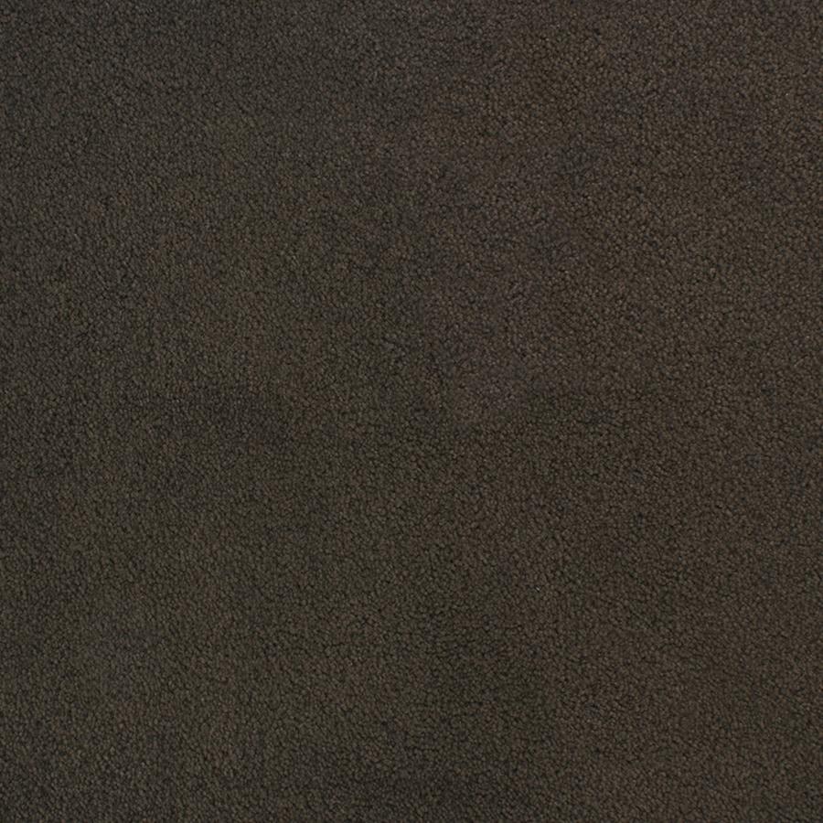 STAINMASTER Capri Place Active Family Brown/Tan Plus Carpet Sample