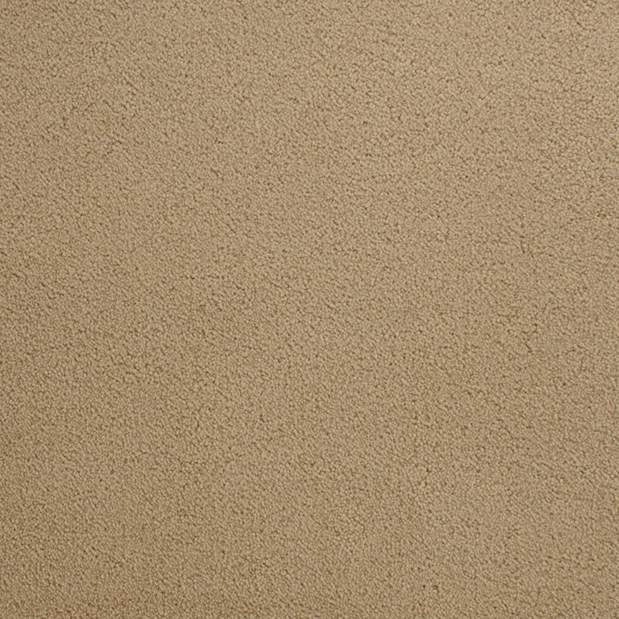 STAINMASTER Capri Place Active Family Brown/Tan Plus Carpet Sample