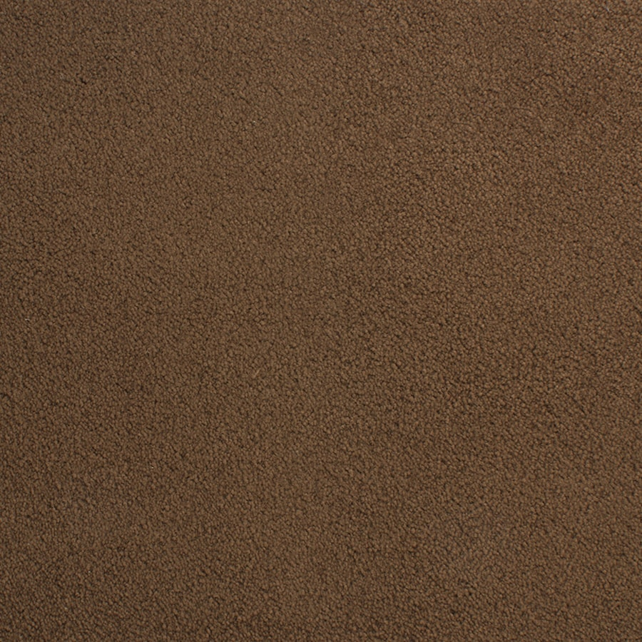 STAINMASTER Active Family Capri Place Brown/Tan Plush Carpet Sample