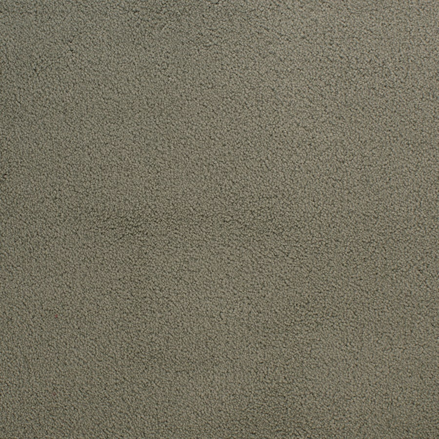 STAINMASTER Capri Place Active Family Green Plus Carpet Sample