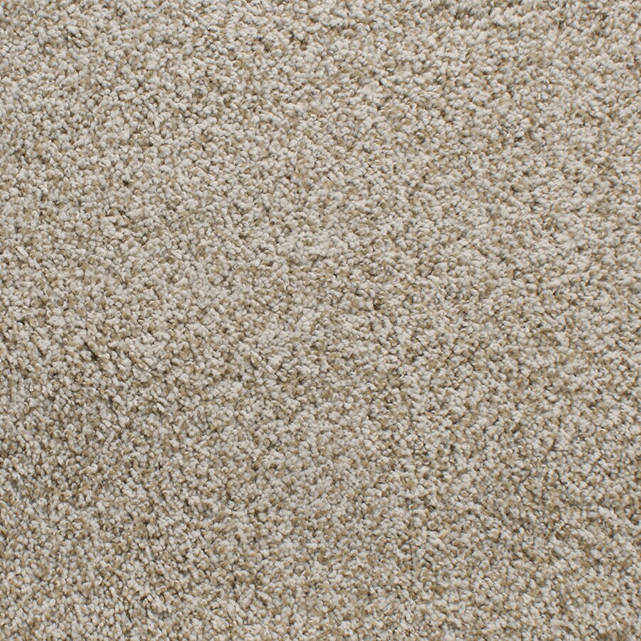 STAINMASTER Active Family Exuberance III Cream/Beige/Almond Plush Carpet Sample