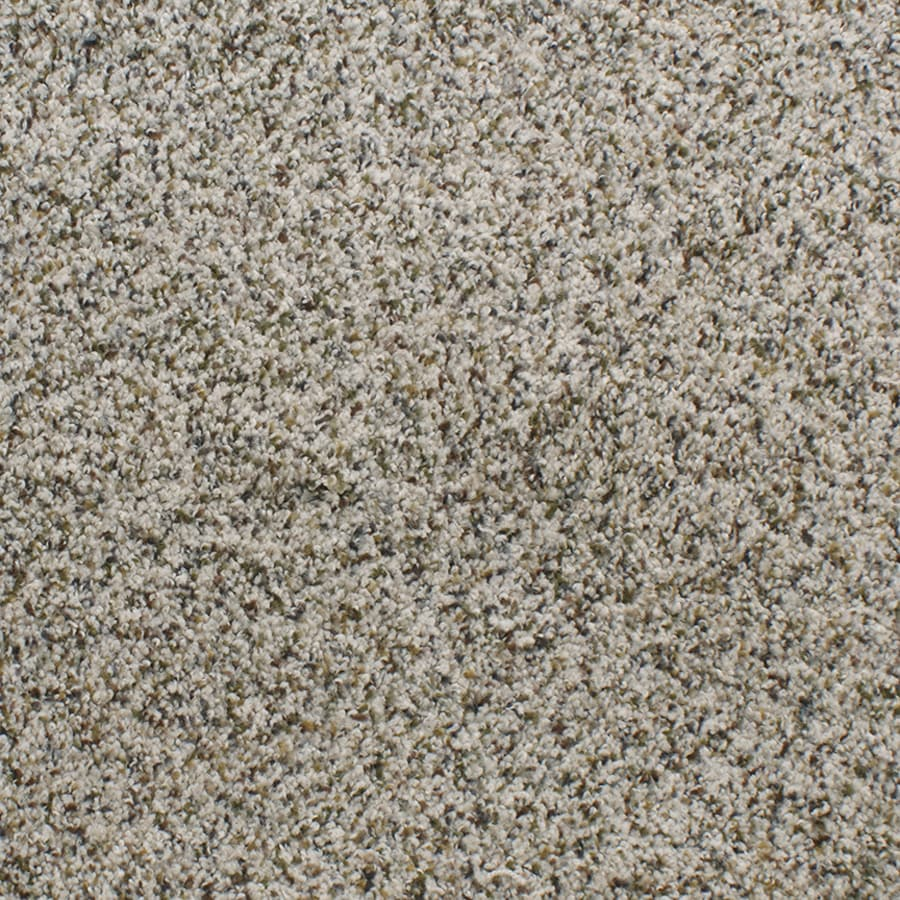 STAINMASTER Exuberance Iii Active Family Cream/Beige/Almond Plus Carpet Sample