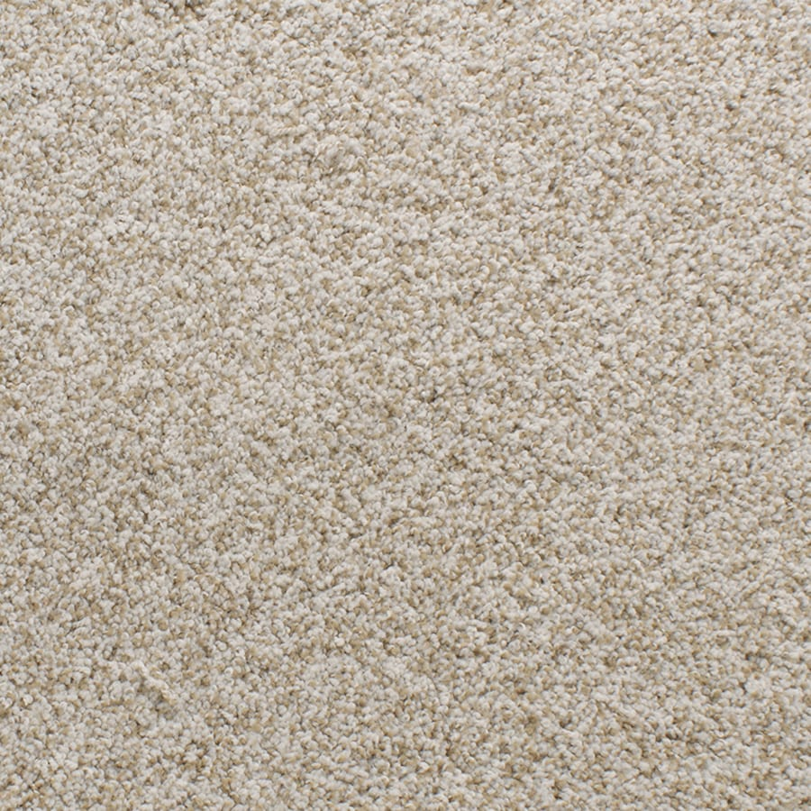 STAINMASTER Active Family Exuberance III Cream/Beige/Almond Carpet Sample