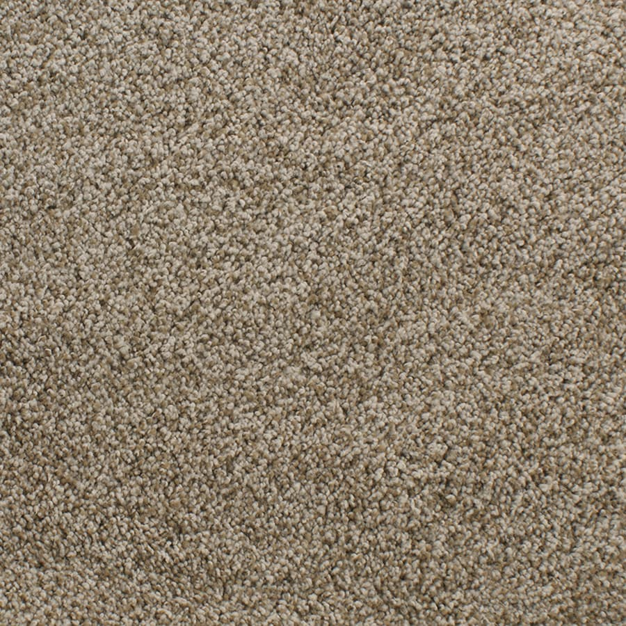 STAINMASTER Exuberance III Active Family Brown/Tan Plush Carpet Sample