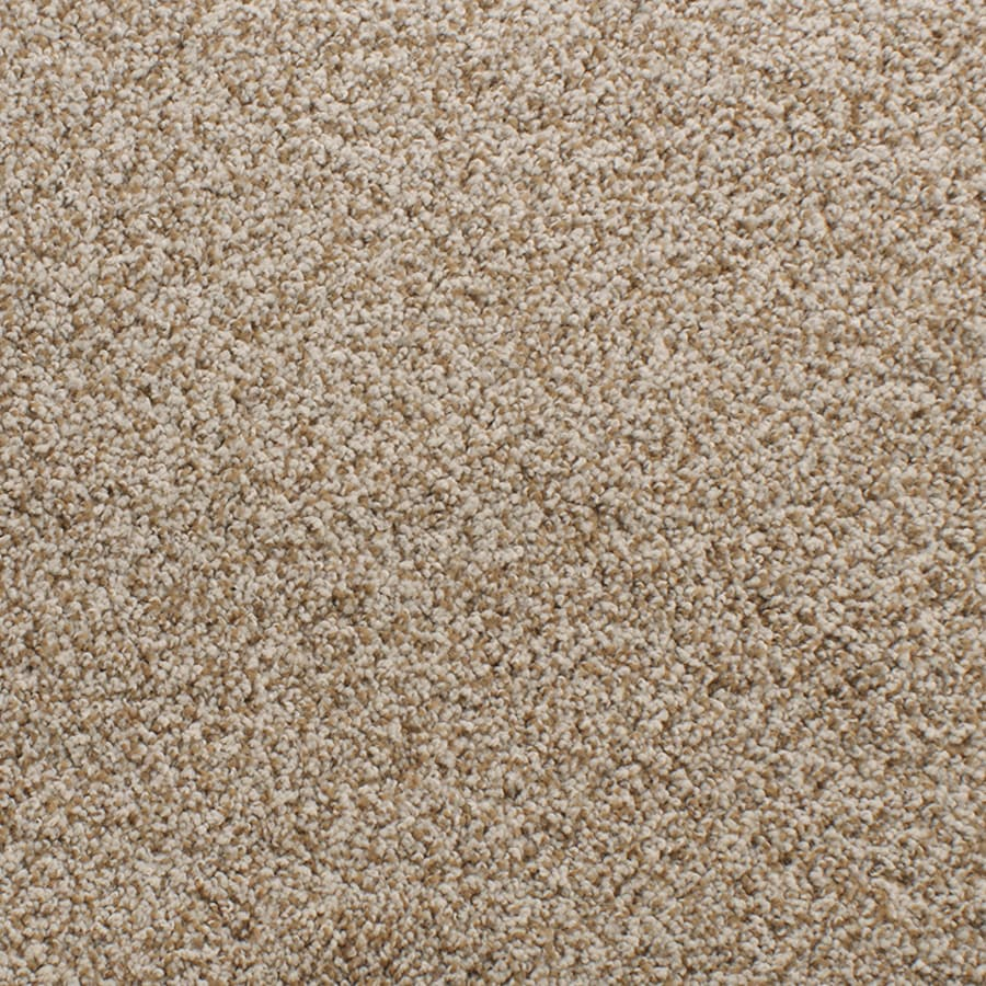 STAINMASTER Exuberance Iii Active Family Brown/Tan Plus Carpet Sample