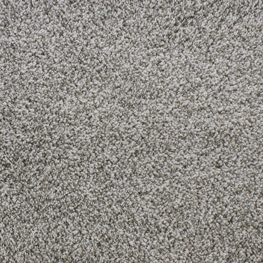 STAINMASTER Exuberance Iii Active Family Gray/Silver Plus Carpet Sample