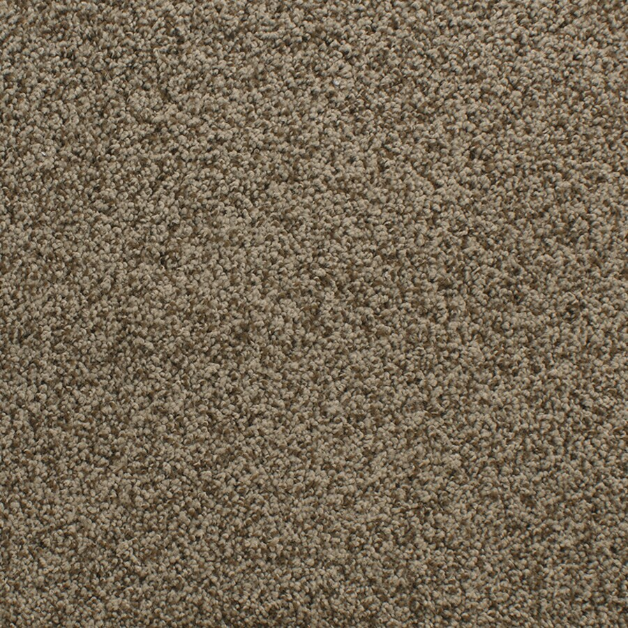 STAINMASTER Active Family Exuberance III Brown/Tan Plush Carpet Sample