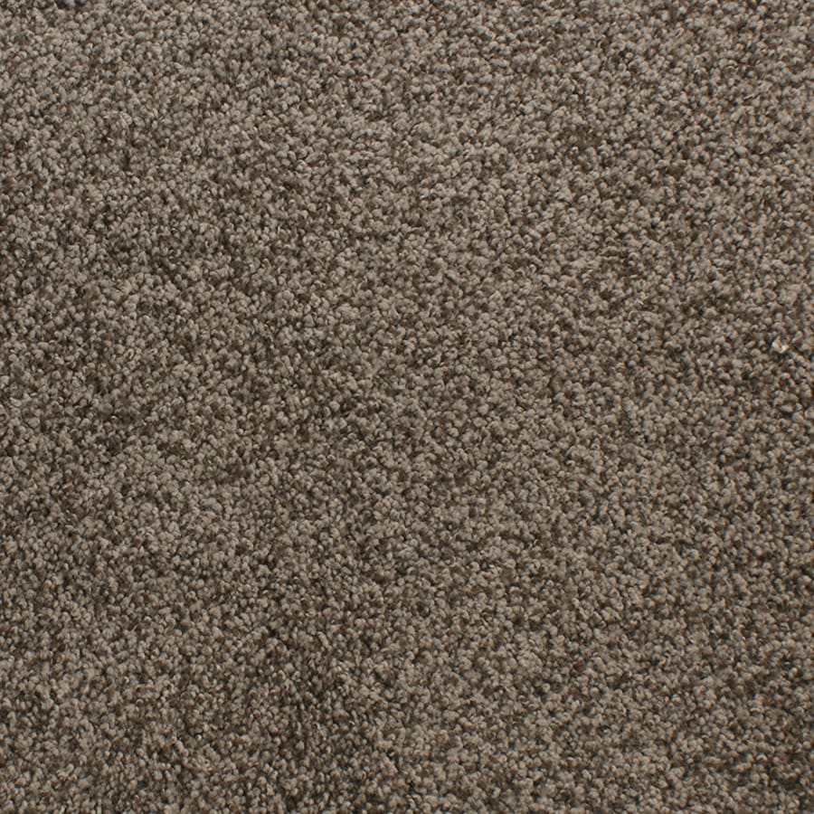 STAINMASTER Active Family Exuberance III Brown/Tan Carpet Sample