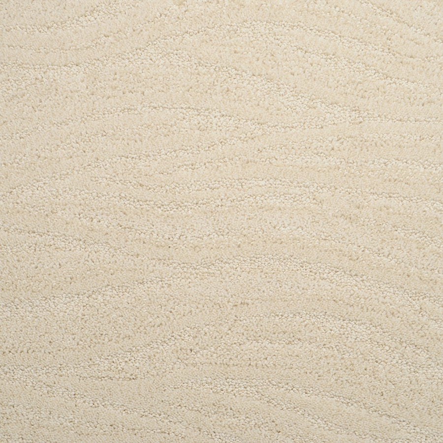 STAINMASTER Rutherford Active Family York Ivory Cut and Loop Carpet Sample