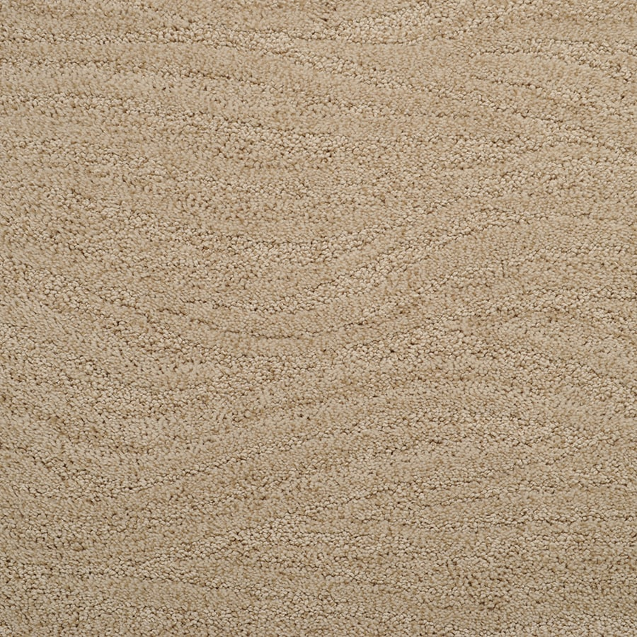 STAINMASTER Active Family Rutherford Ripe Cane Carpet Sample