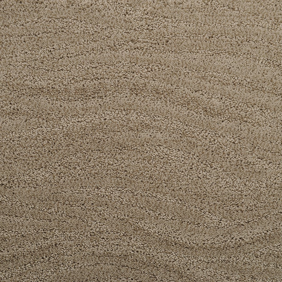 STAINMASTER Rutherford Active Family Willow Twig Cut and Loop Carpet Sample