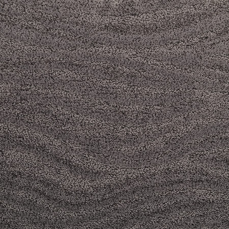 STAINMASTER Rutherford Active Family Bell Flower Cut and Loop Carpet Sample