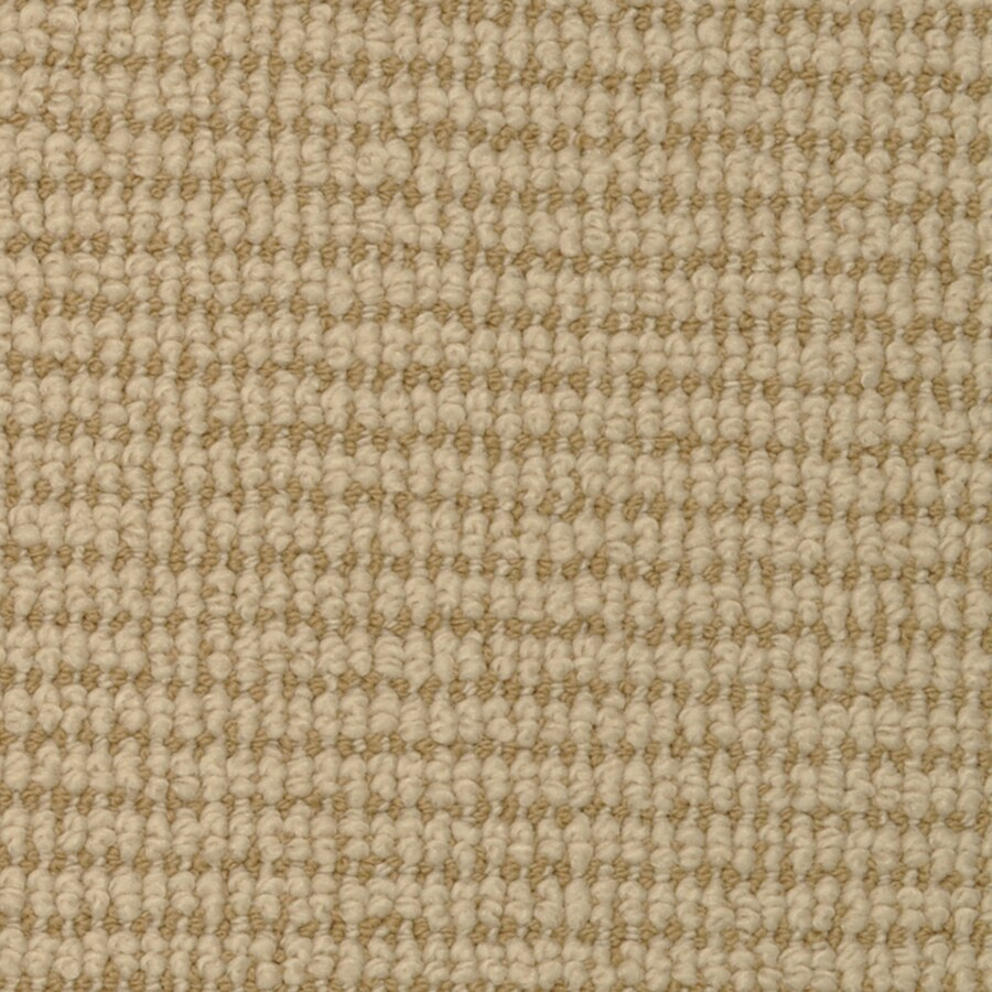 STAINMASTER Morning Glory Active Family Holland Berber Carpet Sample