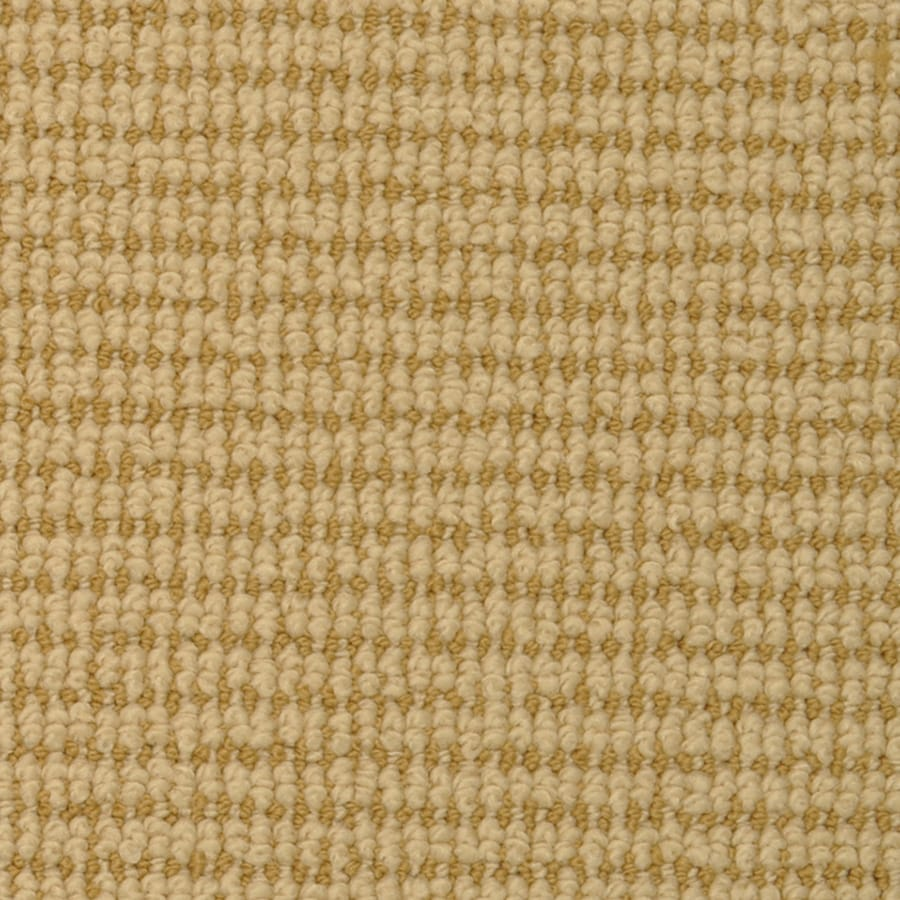 STAINMASTER Morning Glory Active Family Sundew Berber Carpet Sample
