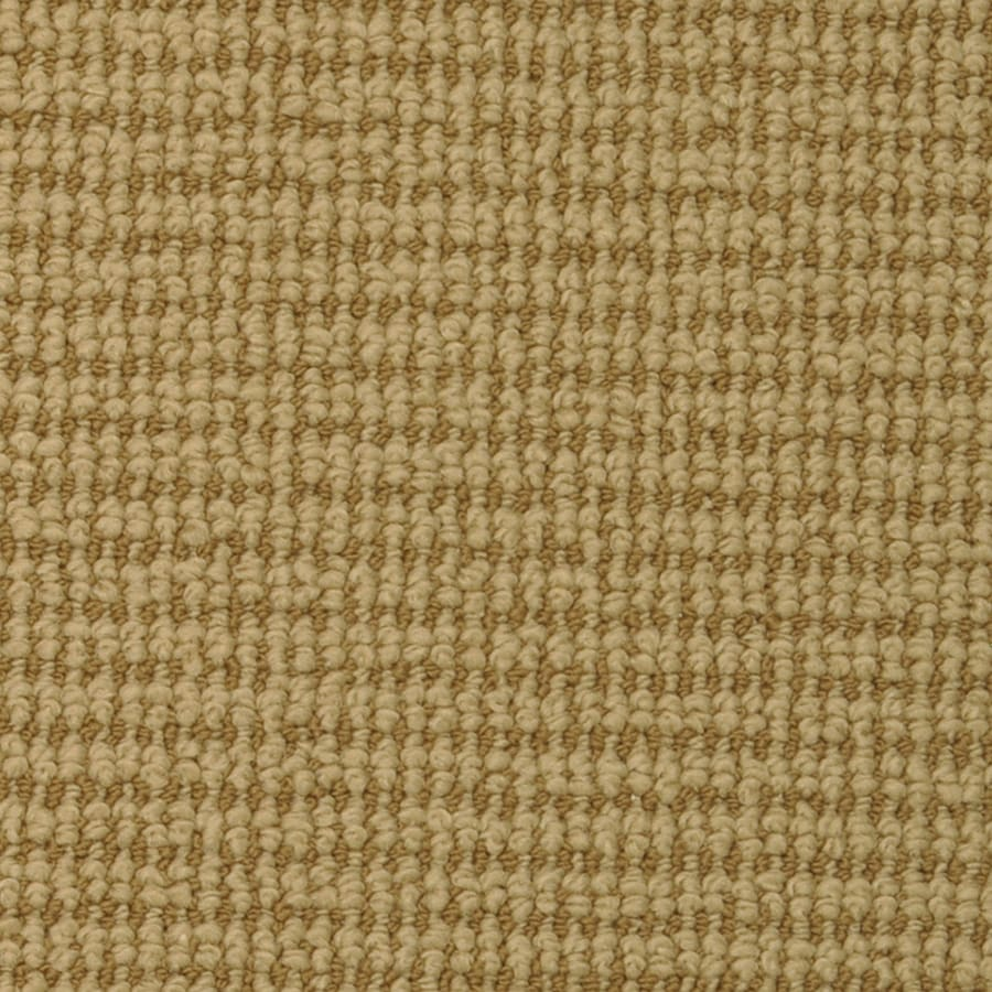 STAINMASTER Active Family Morning Glory Double Khaki Berber/Loop Carpet Sample