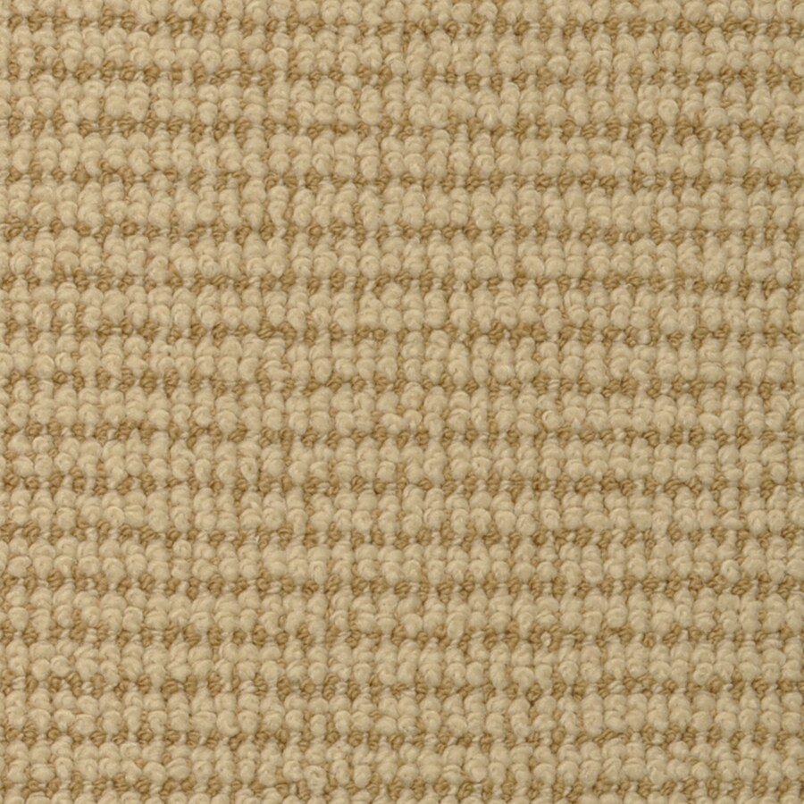 STAINMASTER Active Family Morning Glory Acacia Carpet Sample