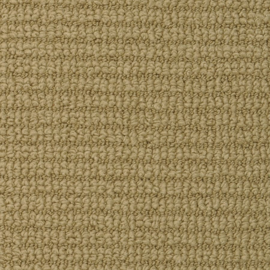 STAINMASTER Morning Glory Active Family Olive Tree Berber Carpet Sample