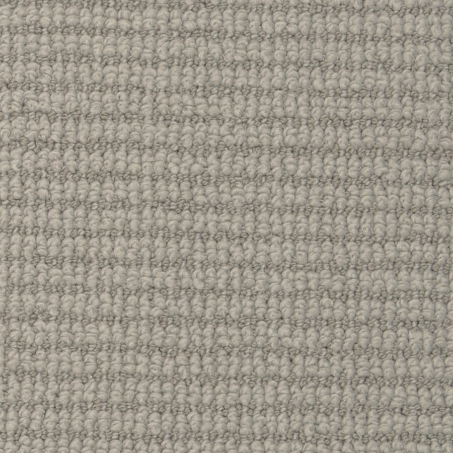 STAINMASTER Morning Glory Active Family Spring Water Berber Carpet Sample