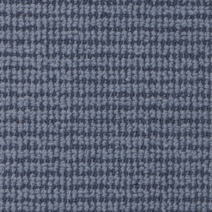 STAINMASTER Morning Glory Active Family Sea Ice Berber Carpet Sample